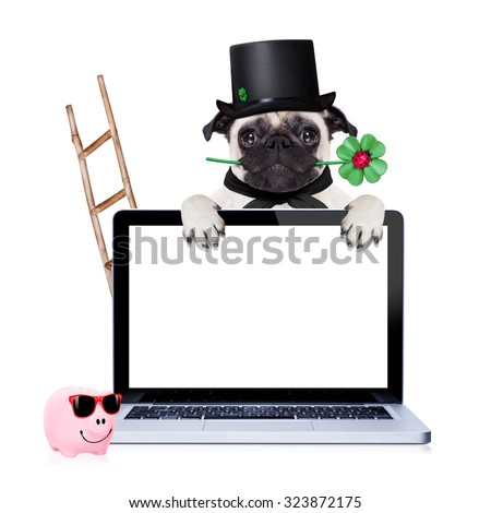 pug dog as chimney sweeper with four leaf clover  behind white pc laptop computer screen , celebrating and toasting for new years eve, isolated on white background - stock photo