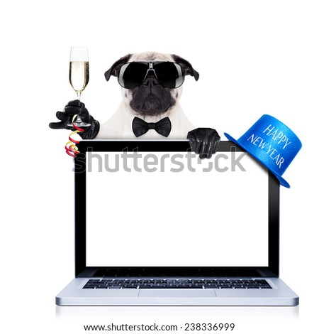 pug  dog  behind a laptop pc laptop computer screen, isolated on white background dog ready to toast for new years eve, behind a laptop pc computer, isolated on white background - stock photo