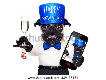 pug dog  toasting for new years eve with champagne glass , taking a selfie, isolated on white background - stock photo
