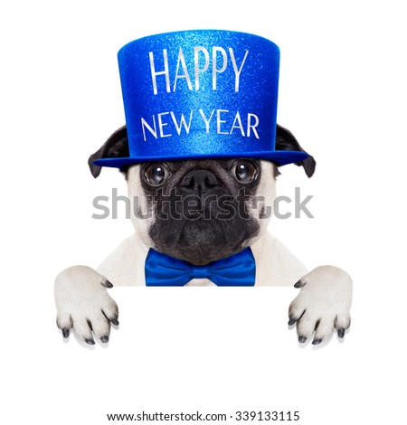 pug dog  toasting for new years eve with hat , behind blank white banner , blackboard or placard, isolated on white background - stock photo