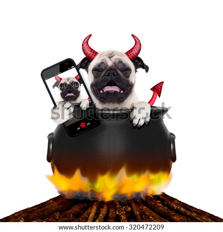 pug halloween devil dog burning inside a boiler on a bonfire like a witch, taking the  last selfie, isolated on white background - stock photo