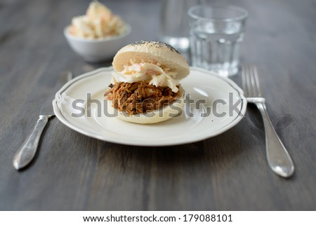 Pulled pork in a bun - stock photo
