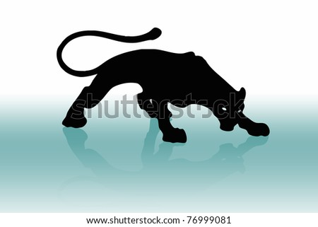 Puma and mirror - stock photo