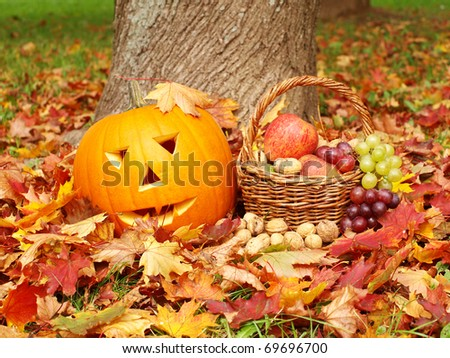 Pumpkin and fall leaves - stock photo