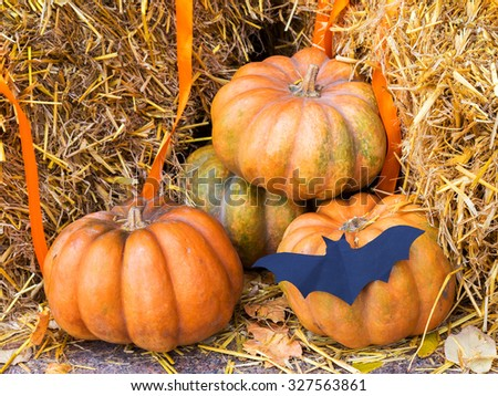 Pumpkin and garlic for holiday Halloween on old wooden bench - stock photo