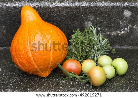 Pumpkin and others Fruits and Herbs of Autumn