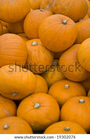pumpkin background/texture