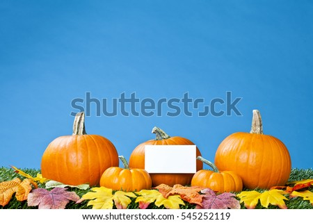 Pumpkin background with white blank card or placard for copy space