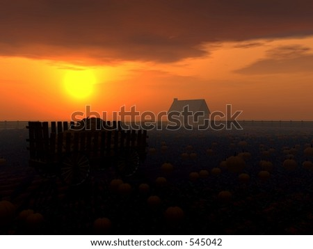 Pumpkin Farm at Sunset - stock photo