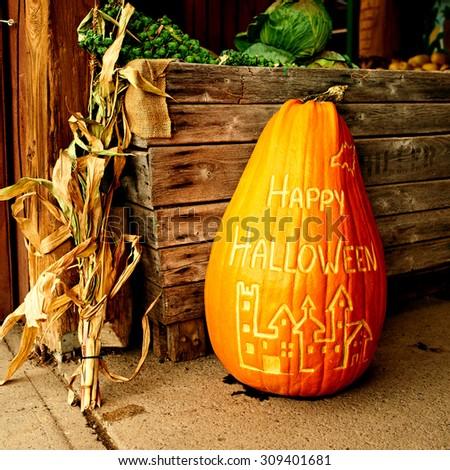 Pumpkin for halloween sale on autumn market - stock photo