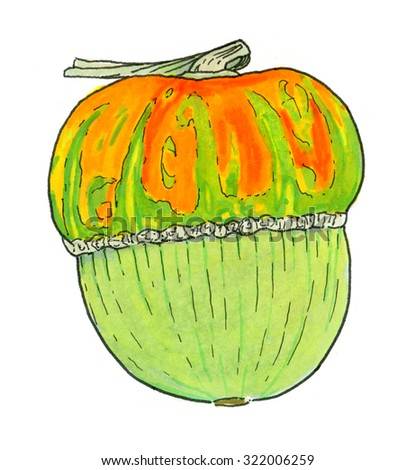 Pumpkin. Hand-drawn vegetable with stripes. Halloween and Thanksgiving day. Real watercolor drawing.  - stock photo