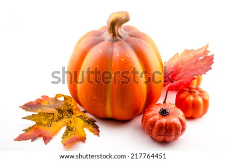 pumpkin isolated autumn halloween - stock photo