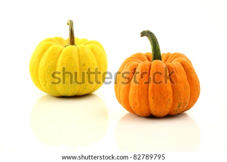 Pumpkin isolated in white background - stock photo