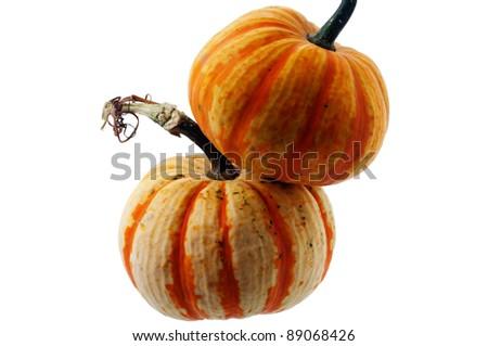 Pumpkin on a white background - stock photo