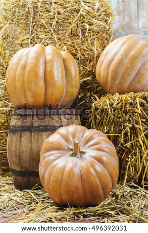 Pumpkin on straw and wooden barrel in an old barn
