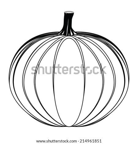 Pumpkin on white background  - stock photo