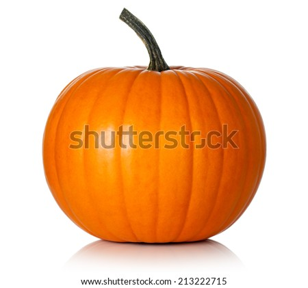 Pumpkin on white background. Fresh and orange - stock photo