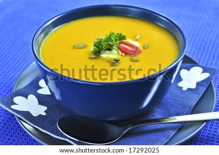 Pumpkin or squash soup in a bowl - stock photo