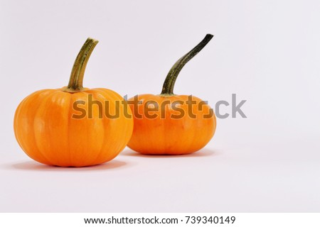 Pumpkin photo for your seasonal projects or vegetables publications.