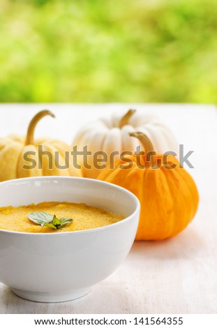 Pumpkin porridge and pumpkins on white wooden table and natural background. - stock photo