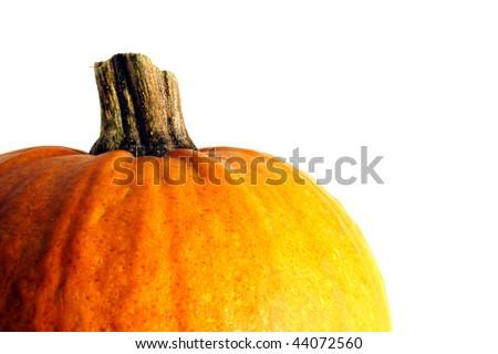 Pumpkin Side - stock photo