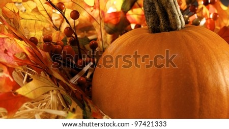 Pumpkin sitting on fall leaves - stock photo