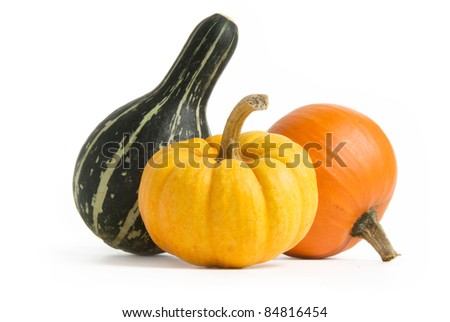 Pumpkin, Squash, Gourd isolated on white background - stock photo