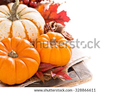 Pumpkin still life  with nuts and spices isolated on white - stock photo