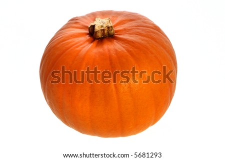 pumpkin, very perfect and bright, ready for you to add a face. clipping path, isolated