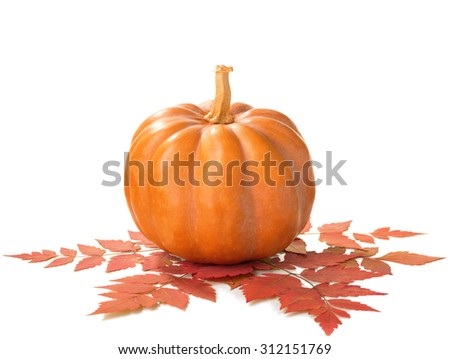 Pumpkin with dry autumn leaves isolated on white background.  - stock photo