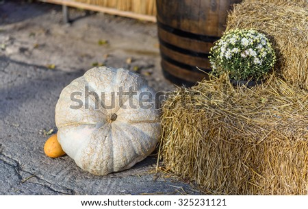 Pumpkin with hay composition