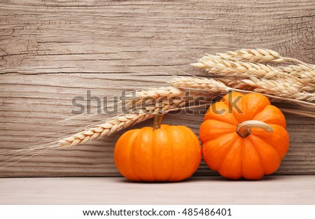Pumpkins and Ears of Wheat over Wooden Background. Harvest. Halloween