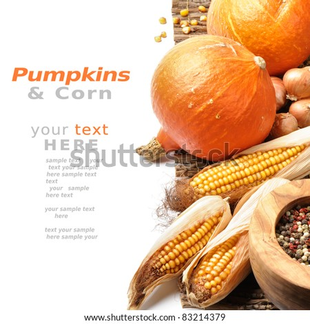 Pumpkins and fall vegetables over white background with copyspace - stock photo