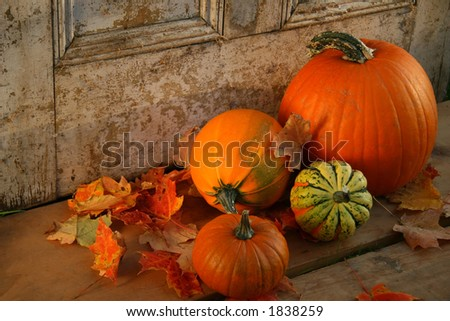 Pumpkins and gourds at the door ready for halloween - stock photo