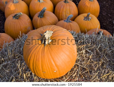 Pumpkins and hay bale.