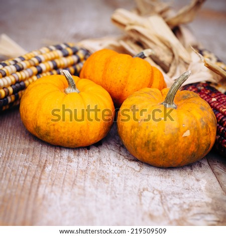 Pumpkins and Indian corn on a wooden table. - stock photo