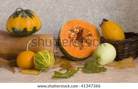 pumpkins and marrow - stock photo