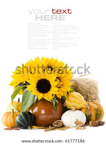 Pumpkins and sunflowers over white (with sample text)