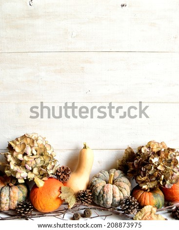 Pumpkins,dried hydrangeas and fall leaves on white wooden background - stock photo