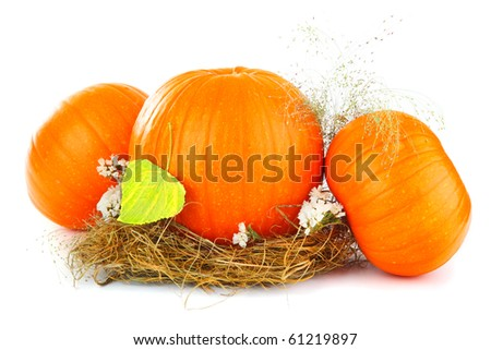 Pumpkins & dry leaves isolated on white - stock photo