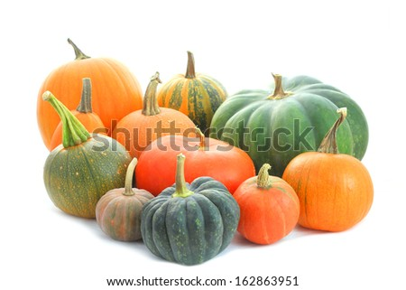 Pumpkins family. Group of different varieties fruits isolated on white background - stock photo