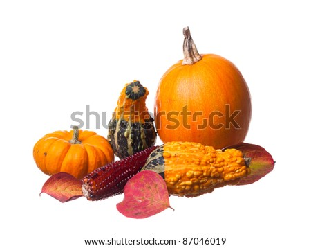 Pumpkins gourds, and leaves. - stock photo