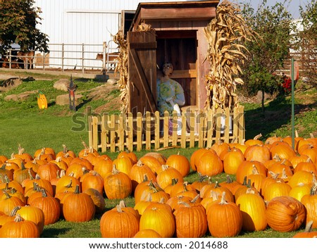 Pumpkins in front of fake outhouse with mannequin - stock photo