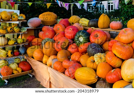 Pumpkins in stall