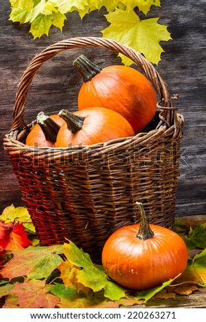 Pumpkins in wicker basket with leaves - stock photo