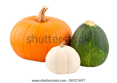 pumpkins, isolated on white background - stock photo