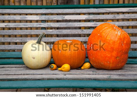 Pumpkins on a bench - stock photo
