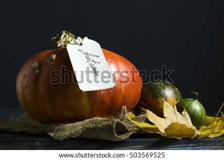 Pumpkins on a blue wooden table.