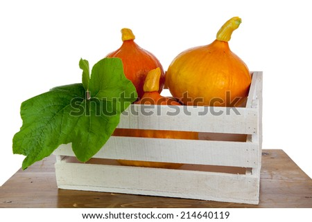 Pumpkins on a wooden table. - stock photo