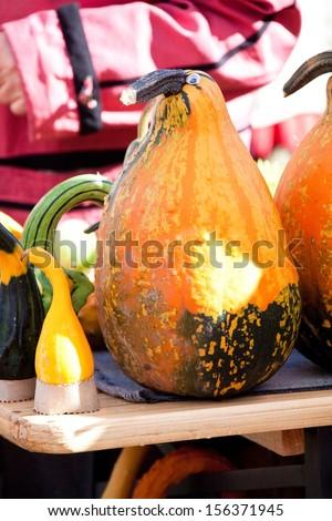 Pumpkins on the seasonal market in Latvia - stock photo